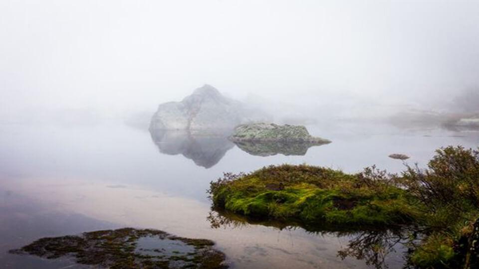 پارک ملی ارگاکی