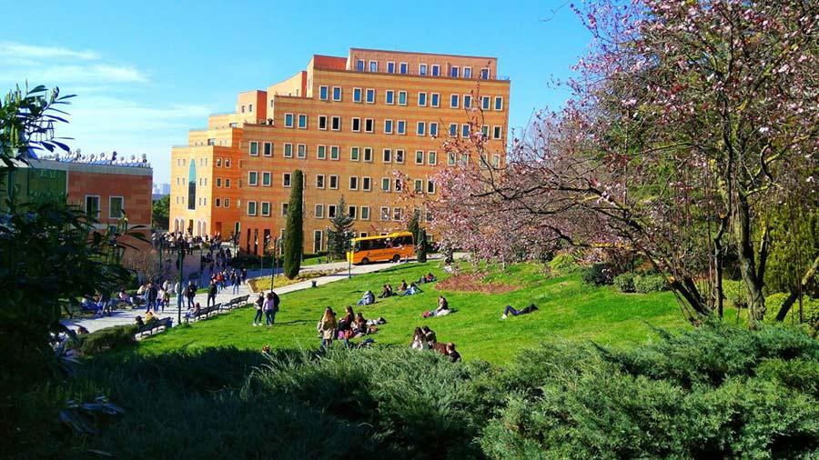 رتبه دانشگاه یدی تپه